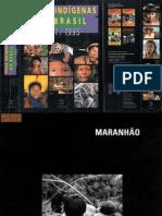 Povos Indígenas no Brasil 1991-1995 (parte 3)