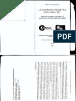 Lectura 1 seguridad energética.pdf