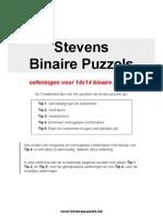 Extra oefeningen voor 14x14 binaire puzzels