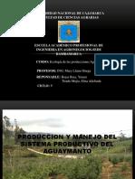 Produccion y Manejo Del Sistema Productivo Del Aguaymanto