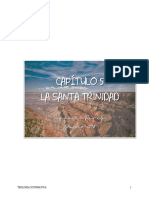 Cap 5 Trinidad.pdf