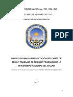 Directiva de Tesis 2017
