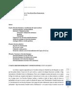 derecho subjetivo y derechos humanos.pdf