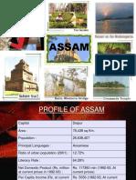 19378957-assam-tourism-ppt-091109114037-phpapp02