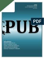 TRABAJO FINAL PUBTEMATICO.pdf