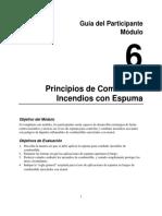 Espumas Guía Del Participante Modulo 6 FINAL 2017