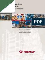 MANUAL-PREV.2.pdf