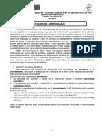 Anexo 06 Material Acad_mico Estilos de Aprendizaje