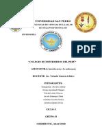 Colegio de Enfermeros Del Perú 2 (1)