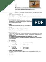 CARRERA DE MOTOS 2017.docx