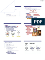 aicebio_carbohydrates.pdf
