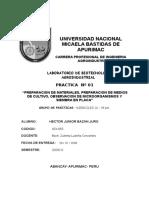 Informe Nº 01 Biotec