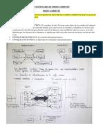 Cuestionario de Medio Ambient Examen Final.pdf