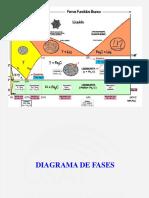 1 Diagrama de Fases