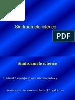 Sindroamele Icterice Prof. Dr. Stoica - Nou