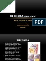 placadentalbiofilm