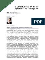 A Emenda Constitucional n° 45 e a nova competência da Justiça do Trabalho