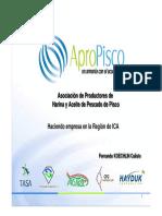 EER-Ica-Fernando-Koechlin agropisco.pdf
