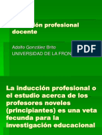 Induccion Profesional Docente