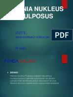 HNP-PRESENTASI-ppt