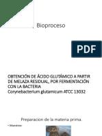 Bioproceso-corynebacteriumglutamicum