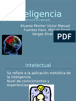 Exp Inteligencia