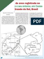 rizzo.pdf