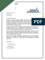 B-Informe Control Interno y Auditoria Operativa