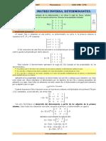 01 Determ Matrices RESUELTOS Parte I