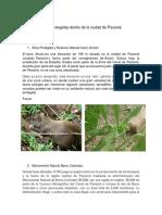 Áreas Protegidas Dentro de La Ciudad de Panamá