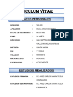 Curriculum Vitae Modelo2