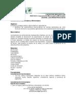 Práctica N°5. Caracterización Macroscópica y Microscópica.
