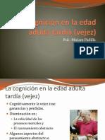 Presentacion Del Tema Cognicion Adulta
