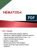 Helminthes - Nematoda