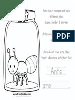 ColorAnt.pdf