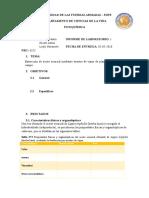 Informe 1_aceite Esencial