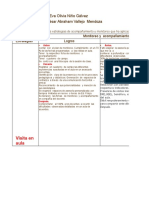Estrategiasdemonitoreoyacompaamiento 151017021049 Lva1 App6892