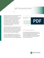 09.060.123 2-Luik Straight Through Processing Guide Internet 20.8.09