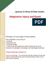 Basic Pathology Lec