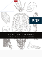 Anatomy Drawing - Conor Power