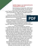 Historias Dos Espiritos Ciganos e as Caracteristicas Da Incorporação de Cada Um