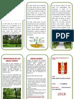 Triptico Como Cuidar Las Areas Verdes Docx