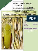 p 7 Elaboracion de Nectar