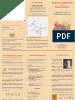 Stage perfectionnement Fleurs  de Bach Ricardo Orozco 2018 - Diagnostic Différentiel