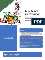 Muerte-por-electrocución