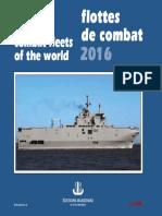 Combat Fleet