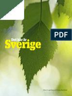 Det-Haer-Aer-Sverige.pdf