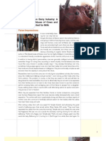 India Dairy Industry Abuse Report