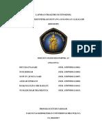 Laporan Praktikum Fitokimia 10-Alkaloid