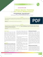 05_219CME_Trauma Medula Spinalis-Patobiologi dan Tatalaksana Medikamentosa.pdf